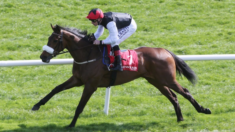 Joailliere: runs in the Listed German Owners and Breeders Sprint Trophy at Dortmund