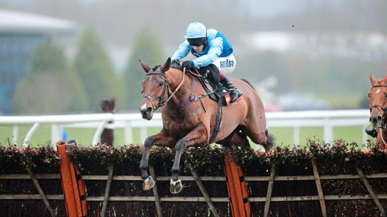 """Fingal Bay: 'We're experimenting by putting him back over hurdles,"""" says trainer Philip Hobbs"""