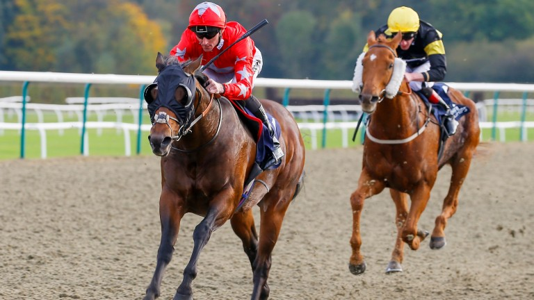 Lord Of The Land winning at Lingfield last month