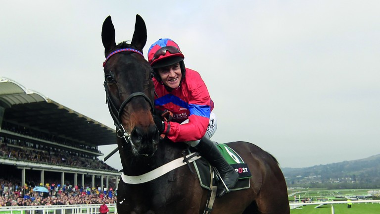 Sprinter Sacre: his dam has a date with a new recruit at stud