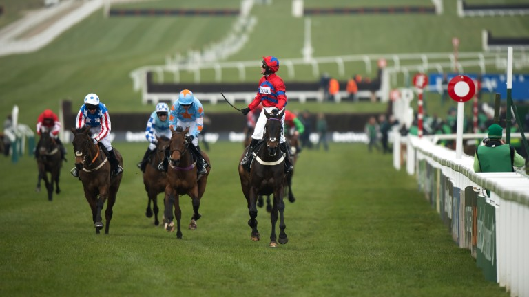 Sprinter Sacre storms up the Cheltenham hill to regain his Champion Chase crown