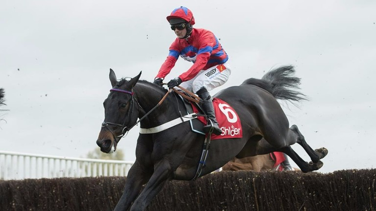 Sprinter Sacre puts in one of his renowned bold leaps