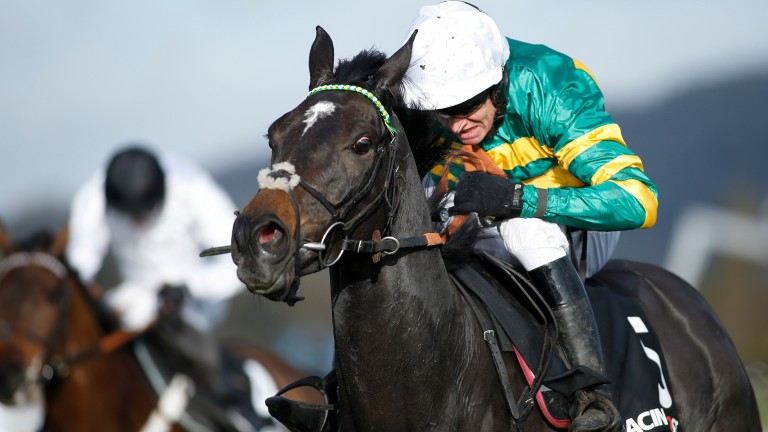 Le Prezien: a contender for the Cheltenham Festival