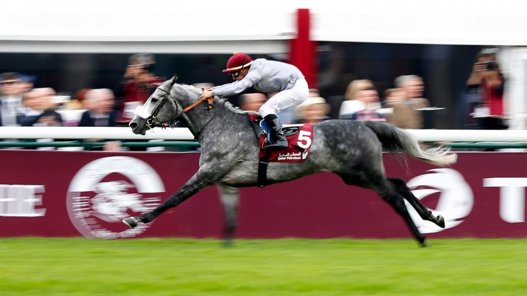Al Mourtajez, pictured winning at Longchamp last year, proved a disappointment