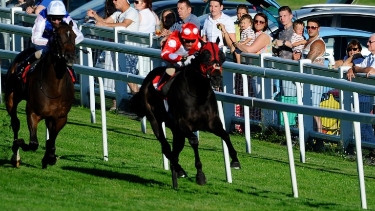 Swiss Cross - takes his career into three figures at Lingfield