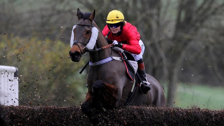 Victoria Pendleton - lit up the point-to-point scene last season