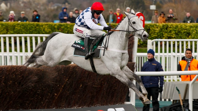 Simonsig: trained by Nicky Henderson to win two Grade 1s