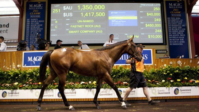 Magic Millions: last year's sale recorded turnover of A$130 million