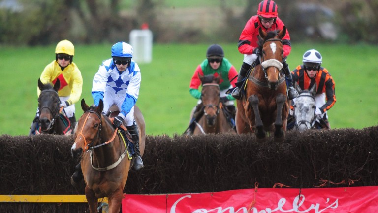Corbeagh PTP 13-11-16 THEMAGICOFMELLERAY & Noel McParlan (right) win the 5&6YO Geldings Maiden race,(Photo HEALY RACING)