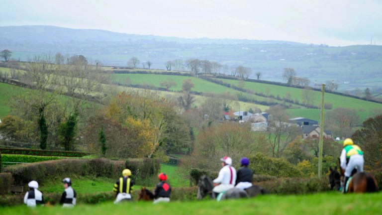 LOUGHBRICKLAND PTP 12-11-2016.Heading to post at the the point to point at the Co Down venue.Photo HEALY RACING.