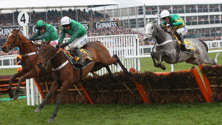 Peace And Co (left): beats Top Notch in the Triumph Hurdle