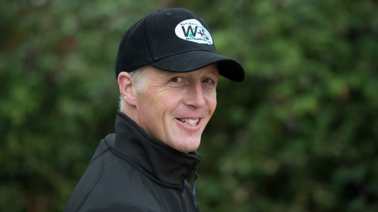 """David Pipe, trainer of Cafe De Paris: """"It's a good opportunity for him in a veterans' race"""""""