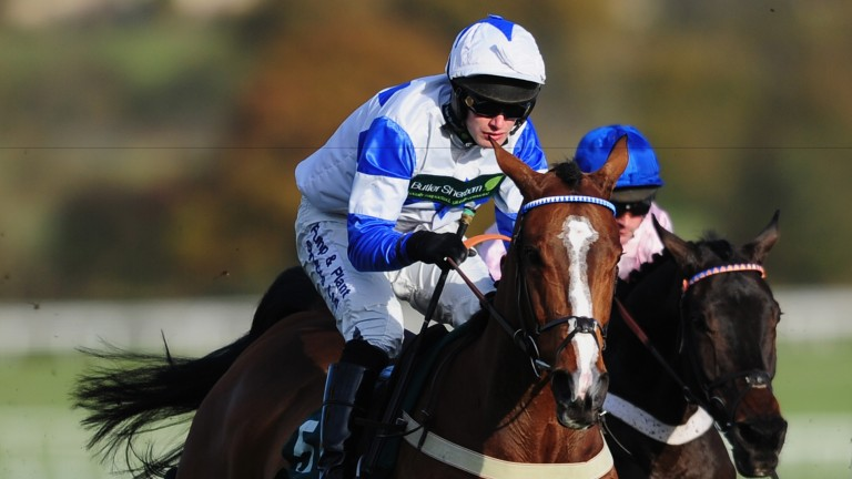 Barters Hill: sustained injury at Cheltenham's open meeting