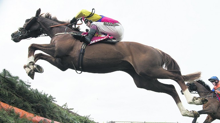 Colin Tizzard agrees Native River looks to be the one to beat in the Hennessy Gold Cup