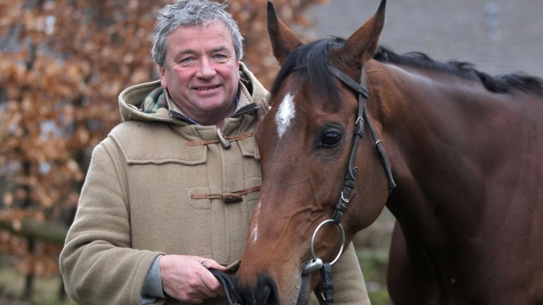 The New One: chasing debut delayed by Nigel Twiston-Davies