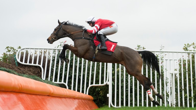 Coneygree: second to Cue Card in the Betfair Chase