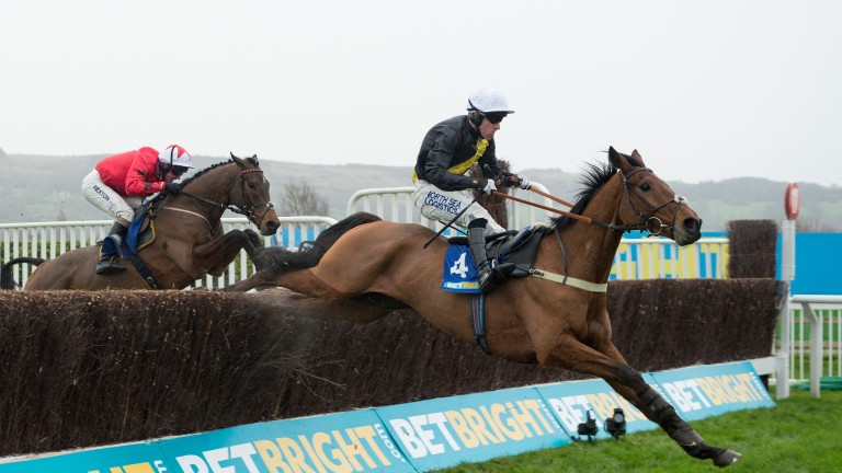 Seeyouatmidnight: Dipper winner ruled out of Cheltenham