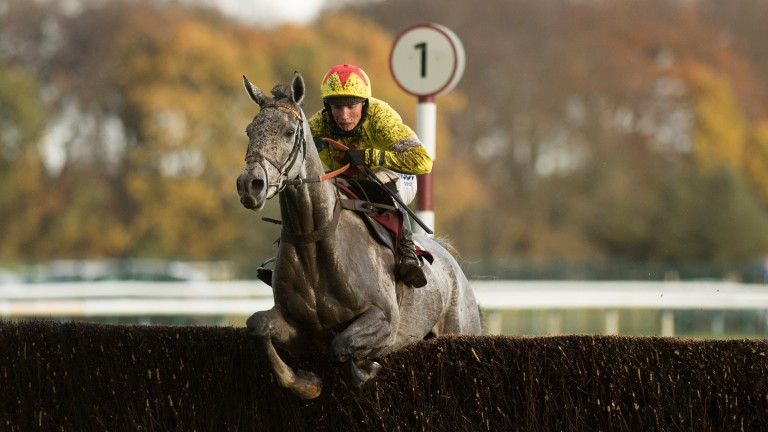 Politologue (Harry Cobden) wins the novice chase for Paul Nicholls