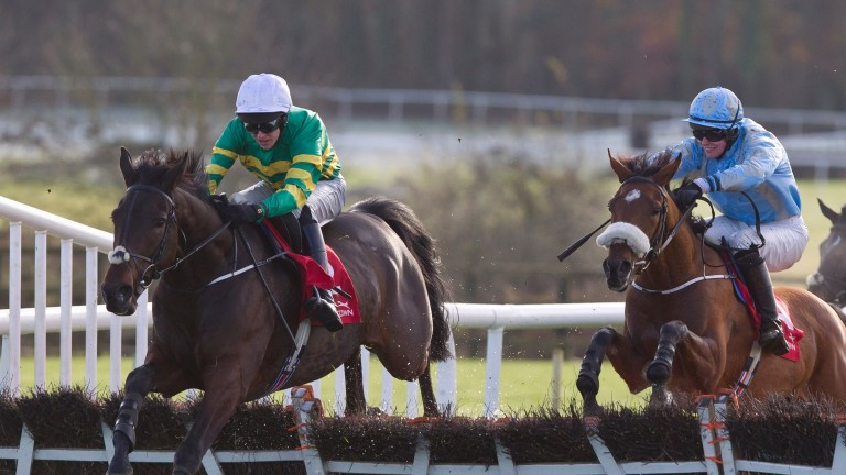 Landofhopeandglory: is now 10-1 favourite for the JCB Triumph Hurdle with Paddy Power