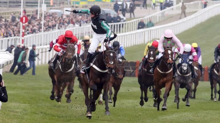 Altior wins at Cheltenham in March
