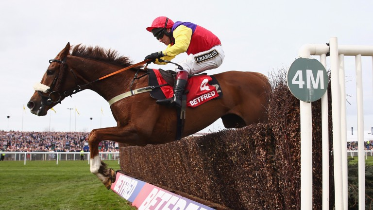 Native River: will be in peak condition for the Hennessy on Saturday, says Colin Tizzard
