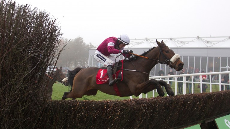 A Toi Phil: confirmed as a runner in the Flogas Novice Chase by trainer Gordon Elliott