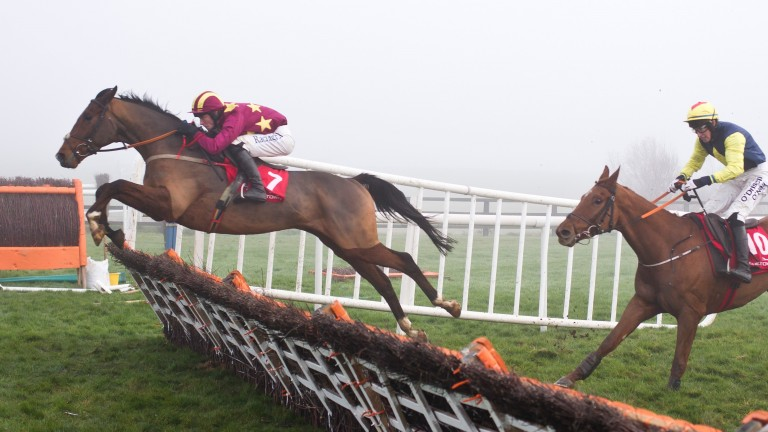 Monalee and David Mullins jump the last to land the 2m6f maiden hurdle