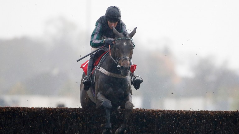 SUNBURY, ENGLAND - NOVEMBER 21:  Noel Fehily riding Altior clear the last to win The Weatherbys Supports Starlight Novices' Steeple Chase at Kempton Park on November 21, 2016 in Sunbury, England. (Photo by Alan Crowhurst/Getty Images)