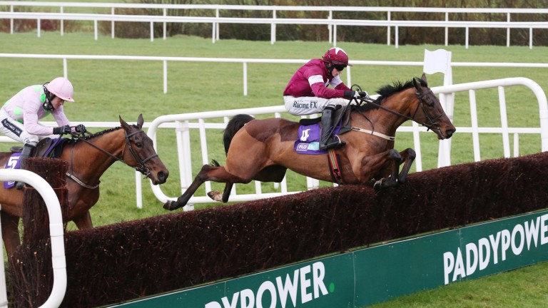Outlander (right): reported in good form by trainer Gordon Elliott