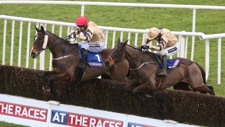 On His Own (left): came within a whisker of winning the Cheltenham Gold Cup