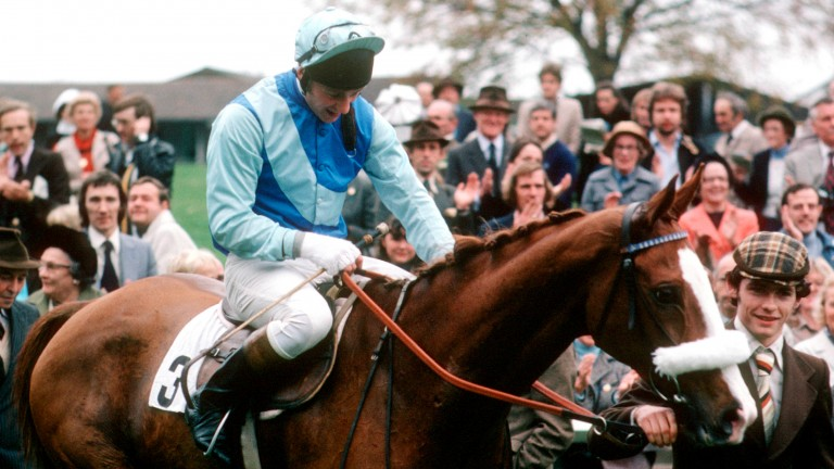 Tingle Creek after bowing out with a track-record victory at Sandown in November 1978