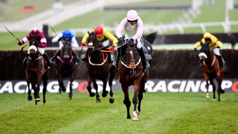Douvan: had been a plunge for the Tingle Creek Chase