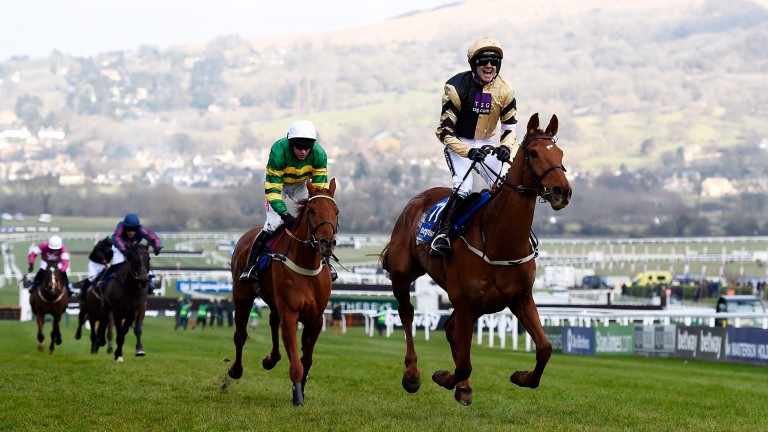 Ruby Walsh celebrates after winning the Neptune on Yorkhill last year