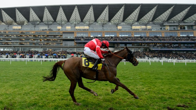 Silviniaco Conti: only 50-50 to contest the King George VI Chase