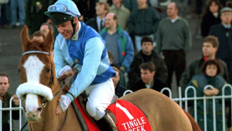 Together again: Tingle Creek and Steve Smith Eccles reunited at Sandown in 1994; the great horse paraded every year before the race named in his honour