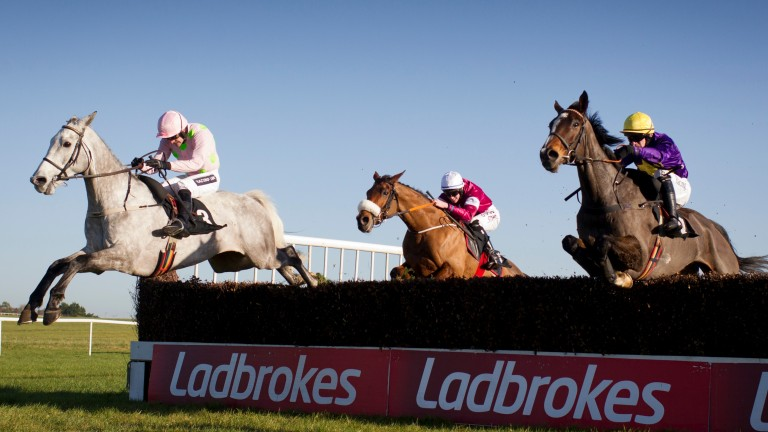 Champgane Fever and Ruby Walsh leads Lord Windermere over the last fence during the 2m 6f listed chase Thurles Photo:Patrick McCann 24.11.2016