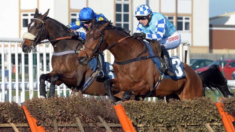 Double Shuffle (nearside): out to make up for Cheltenham flop