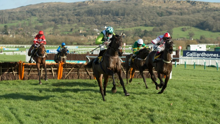 Protek Des Flos (left): rallies up the Cheltenham hill to pass Clan Des Obeaux (middle)