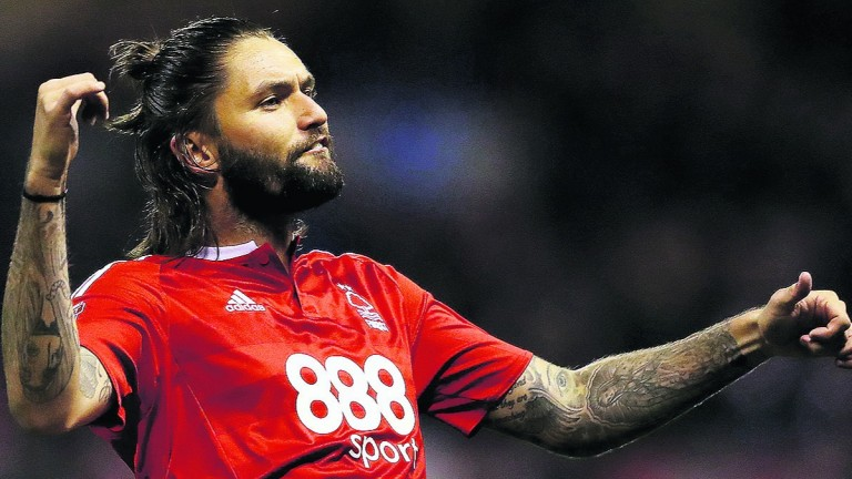 Henri Lansbury of Forest has not had much to celebrate this term
