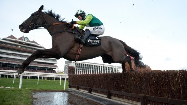 Denman: a Gold Cup hero and dual winner of the Hennessy under top weight