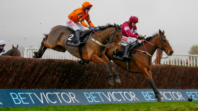 Thistlecrack and Tom Scudamore (nearside) in action over the Cheltenham fences