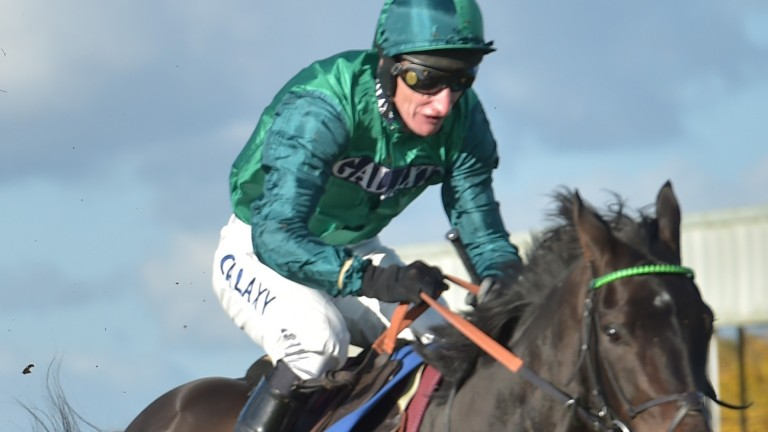 Sceau Royal: bids to join some illustrious winners of the Fighting Fifth Hurdle