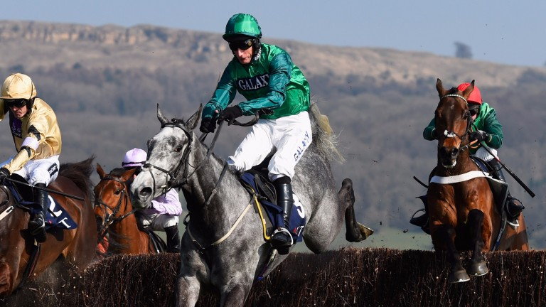 Bristol De Mai: brings a classy overall profile into the At The Races Rehearsal Chase