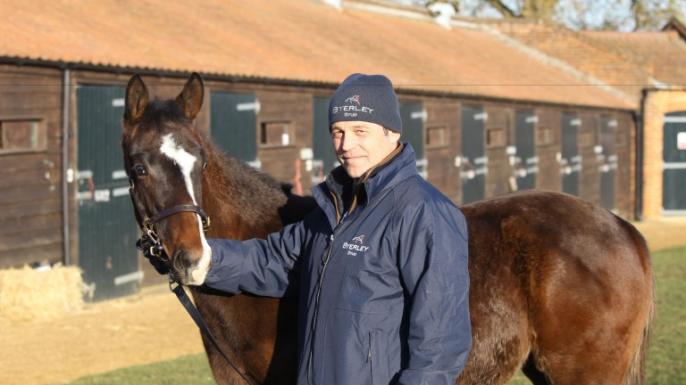 Byerley Stud manager Ian Bradbury with a Mukhadram colt foal