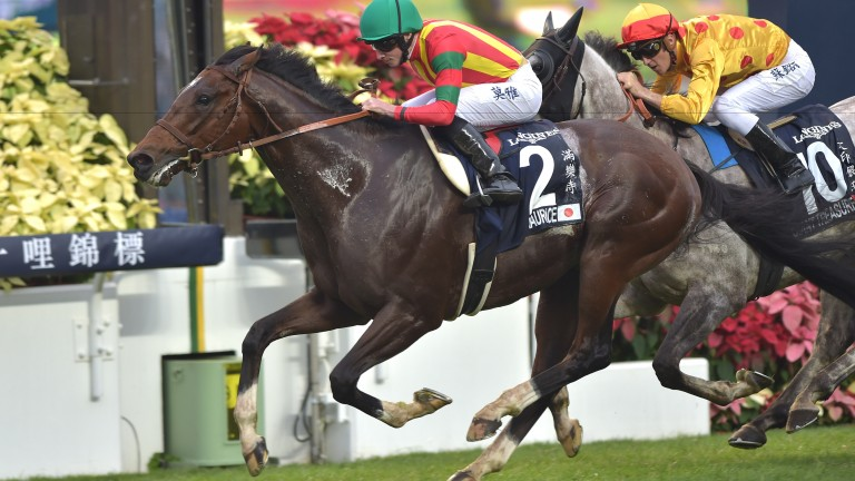Ryan Moore goes for another Hong Kong win on 2015 Japanese Horse of the Year Maurice