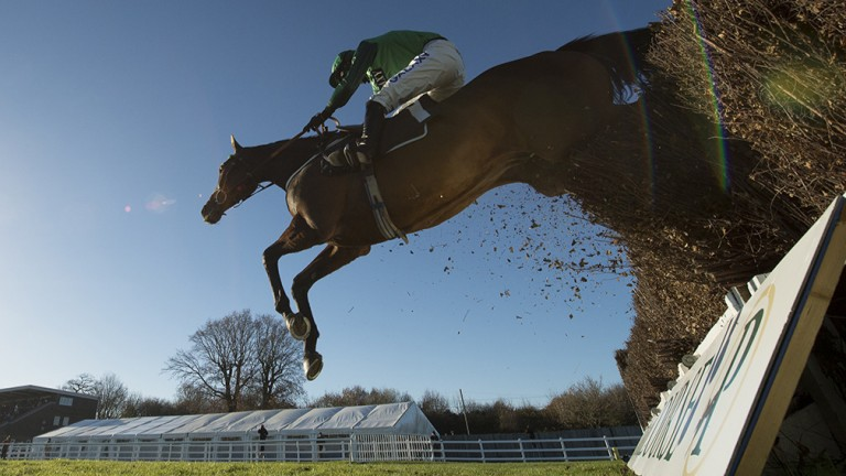 Top Notch sails over the last fence at Plumpton
