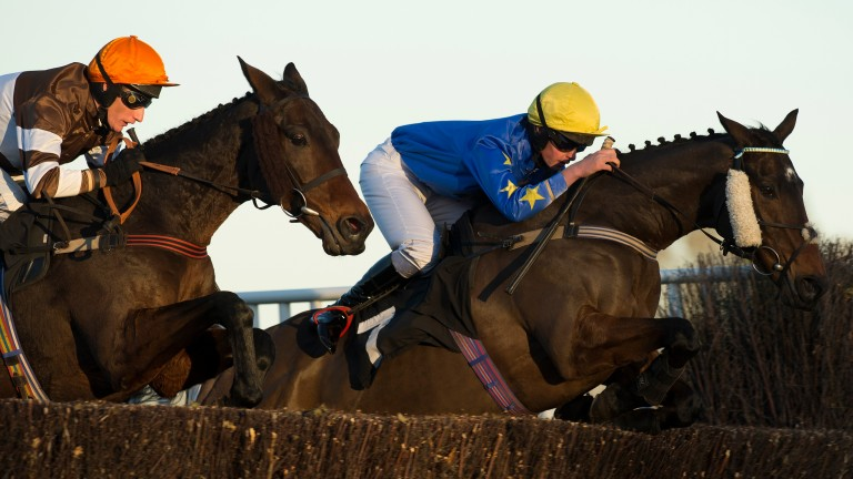 Eventually winner Water Wagtail and Daryl Jacob  (left) jump alongside Burgess Dream in the handicap chase