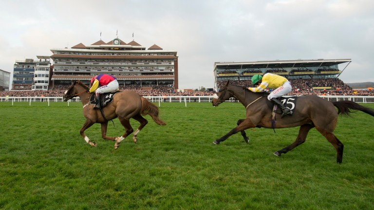 A costly result for Newbury as Native River (left) takes the Hennessy from Carole's Destrier