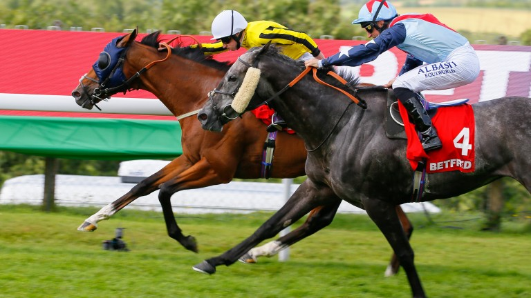Master The Word (nearside) pushes Franklin D hard in the Betfred Mile at Goodwood