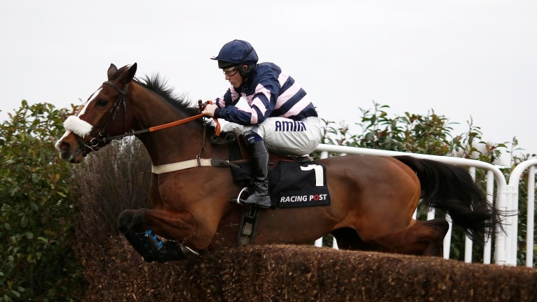 Ar Mad will definitely take his chance alongside stablemate Sire De Grugy in the Betfair Tingle Creek Chase